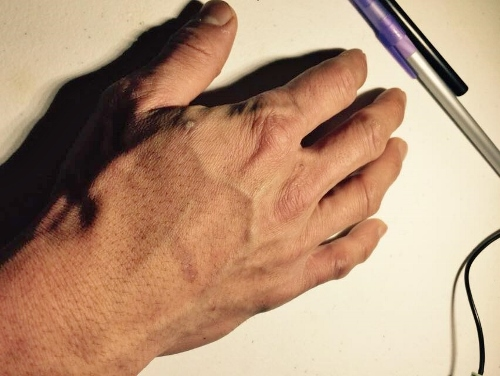 the hands of a chef 3