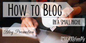 How to Blog - Blog Promotion