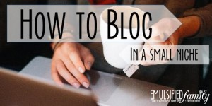 How to Blog in a small niche